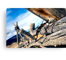 Strands Canvas Print