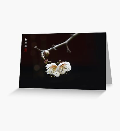 The First Spring Ume Greeting Card