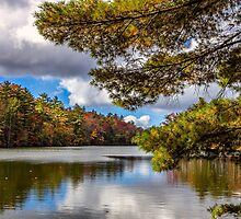 Fort Mountain State Park: Lake trail by Bernd F. Laeschke