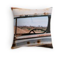 Windscreen Views Throw Pillow