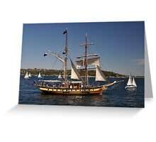 Windeward Bound, Sydney Harbour, Australia 2013 Greeting Card