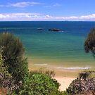 cerberus   Black Rock  Victoria Australia by bayside2