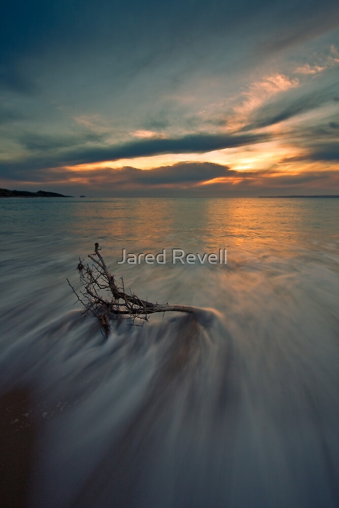 Desperation by Jared Revell