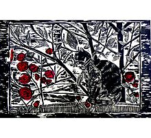Poppy on the Deck-Woodcut Photographic Print