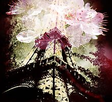 Paris, Springtime in Pink by LLStewart