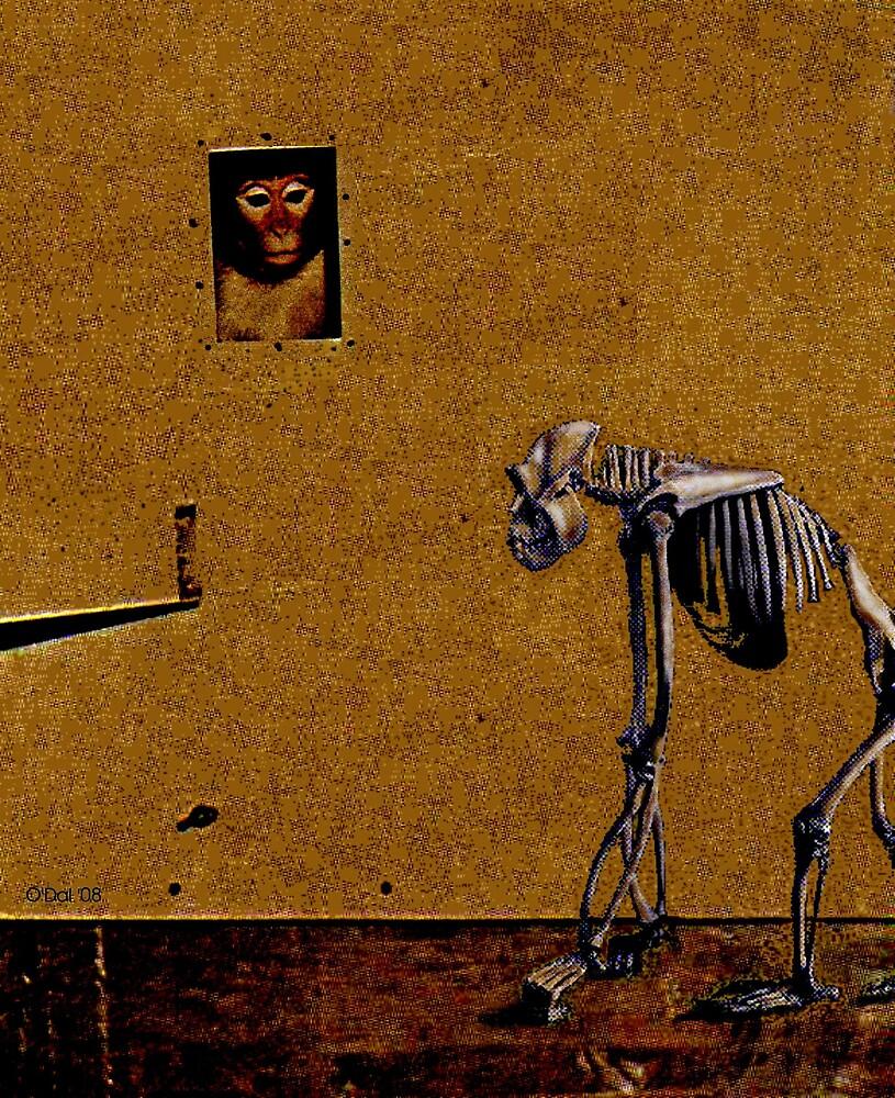 Me And My Monkey by John O'Dal