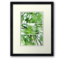The wind in the Birch Framed Print