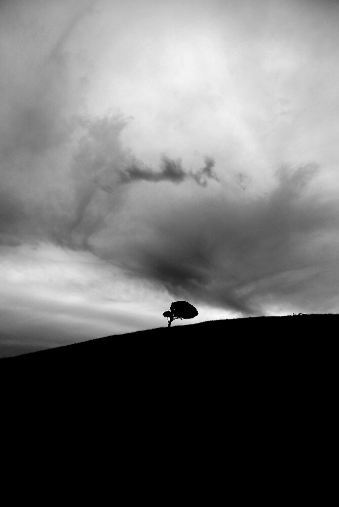 Lonely Tree by ein22