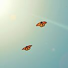 Monarch Sky Love by RichCaspian