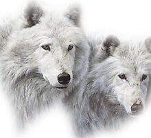 Wolves by Vitalia