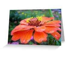 Flower Series Greeting Card