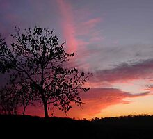 Super Sunset Silhouette by NotTinyTim