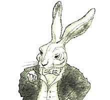 Rabbit and His Golden Watch Photographic Print