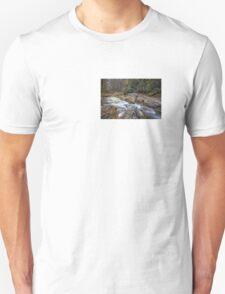 Full of treasures: Dukes Creek (II) T-Shirt