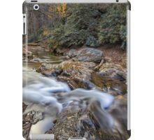 Full of treasures: Dukes Creek (II) iPad Case/Skin