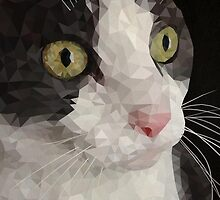 Cat PolyPortrait by fohkat