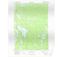 Maine USGS Historical Map Molasses Pond 102758 1982 24000 Poster