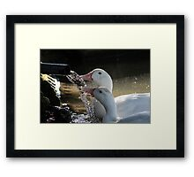 Adam's Ale for Two Framed Print