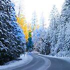 Snowy Road by Robert Woods