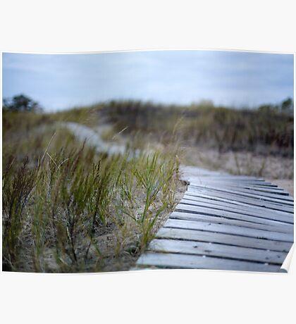 Dune Boardwalk Poster