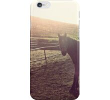 Snickers in the Sun iPhone Case/Skin