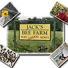 Jack's Bee Farm by Patricia Montgomery