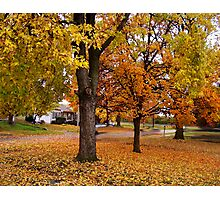 November On The Sherry Photographic Print