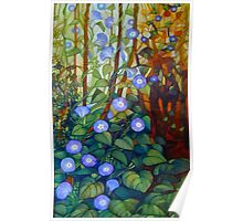 "Ipomoea ""caerulea blue"" Poster"