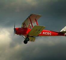 DH82a - DE HAVILLAND TIGER MOTH / G-ACDC (DELTA CHARLIE)  by larry flewers