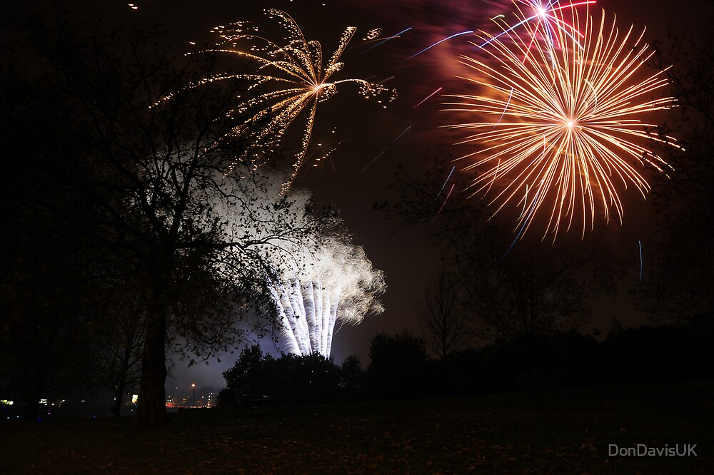5th November: Guy Fawkes' Night by DonDavisUK