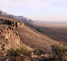 New-Mexico Desert by franceslewis