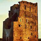 Carrigafoyle Castle by Polly x
