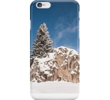 Climber iPhone Case/Skin