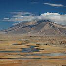 Wild Tibet by Peter Gostelow