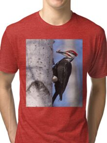 Male Pileated Woodpecker - Ottawa, Ontario Tri-blend T-Shirt