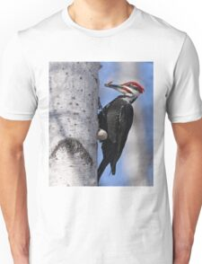 Male Pileated Woodpecker - Ottawa, Ontario T-Shirt