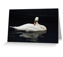 Swan V Greeting Card