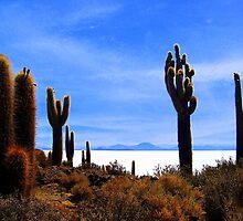 Uyuni Salar Desert by Honor Kyne