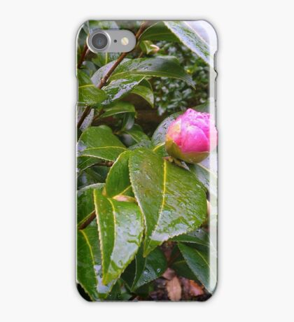 Pink Flower after the rain in Belfast iPhone Case/Skin