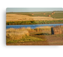 October In Saskatchewan Metal Print