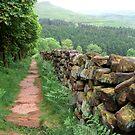 """""""Narrow is the Path"""" by Bradley Shawn  Rabon"""