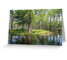 Reflections in the swamp Greeting Card