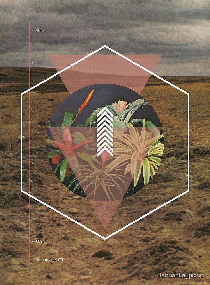 Desert Plants by Hannahkaypiche