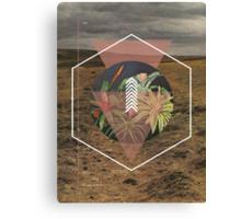 Desert Plants Canvas Print