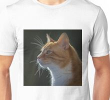 Ginger Tom cat staring Unisex T-Shirt