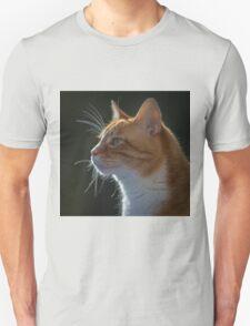 Ginger Tom cat staring T-Shirt