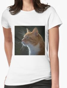 Ginger Tom cat staring Womens Fitted T-Shirt