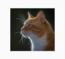 Ginger Tom cat staring Unisex T-Shirt