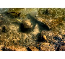 Under the Silent Water Photographic Print