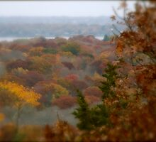Autumn in Rhode Island | Tower View  Easterly by Jack McCabe